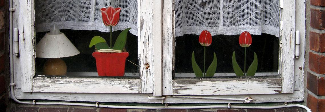 Reparatur von Fenstern